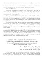 Nghiên cứu tác dụng của sâm Việt Nam (Panax Vietnamensis Ha Et Grushv., Araliaceae) và đinh lăng (Polyscias fruticosa (l.) Harms, Araliaceae) trên trí nhớ
