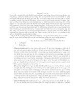 Tiểu luận Cán cân thương mại Việt Nam-Thực trạng và giải pháp