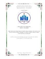 Một số giải pháp hoàn thiện hoạt động tín dụng tại Ngân hàng Nông Nghiệp và Phát Triển Nông Thôn Chi nhánh Cam Ranh