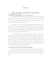 Tiểu luận PHÁT TRIỂN HỆ THỐNG DOANH NGHIỆP ĐIỆN TỬ PHÂN TÍCH XÂY DỰNG GIẢI PHÁP ERP CHO DOANH NGHIỆP GIẤY BÃI BẰNG