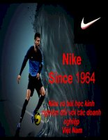 Tiểu luận kinh doanh quốc tế Nike và bài học kinh nghiệm đối với các doanh nghiệp Việt Nam