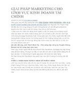 GIẢI PHÁP MARKETING CHO LĨNH vực KINH DOANH tài CHÍNH