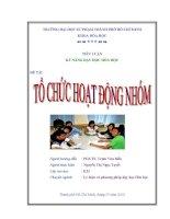 Tiểu luận kỹ năng dạy học Tổ chức hoạt động nhóm