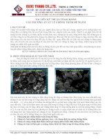 CHuyên đề Các phương án xử lý chống thấm bể nước ngầm
