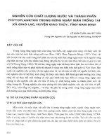 Nghiên cứu chất lượng nước và thành phần Phytopkton trong rừng ngập mặn trồng tại xã Giao Lạc, huyện Giao Thủy, tỉnh Nam Định