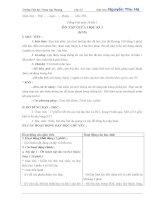 Giáo án: Tiếng Việt tuần 10 tiết 1 ÔN TẬP GIỮA HỌC KÌ I (KNS)