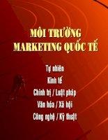Bài giảng môn marketing quốc tế môi trường marketing quốc tế