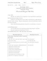 Giáo án: Môn Mĩ thuật – Tuần 19 Chủ đề TRẢI NGHIỆM CÙNG TÁC PHẨM Thường thức Mĩ thuật Xem tranh Dân gian Việt Nam