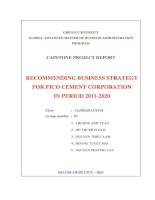 Recommending business strategy for fico cement corporation in period 2011 - 2020