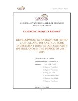 Development strategy for petro capital and infrastructureinvestment joint stock company (petroland) in the period of 2011 - 2015