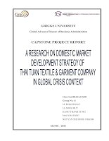 A research on domestic market development strategy of Thai Tuan textile& garment company in global crisis context