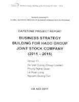 Business strategy building for HADO Group Joint Stock Company (2011-2015)