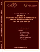 Strategy on training anddevelopment of human resource for Ho Chi Minh power corporation stage 2010 - 2015, vision 2020