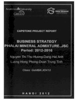Busines strategy Pha Lai Mineral Admixture.,JSC period 2012-2016
