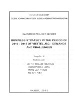 Business strategy in the period of 2010-2015 of Viettel JSC - Demands and challenges
