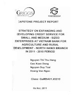 Strategy on expanding and developing credit service for small and medium - Sized enterprises at VietNam bank for agriculture and rural development - North Ha Noi branch in 2011