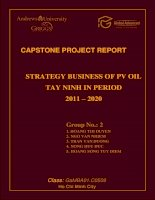 Strategy business of PV OIL Tay Ninh in period 2011 - 2020