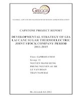 Developmental strategy of Gia Lai cane sugar thermoelectric joint stock company period 2011-2015 c