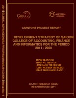 Development strategy of saigon college of accounting, finance and informatics for the period 2011 - 2020