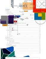 Marketing Plan of Dove (micro and macro )