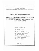 Market development strategy for Viet Fashion Corporation for 2011-2015