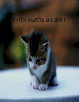 slide thuyết trình Hình ảnh các con vật (Kitten, Hamster and Rabbit)