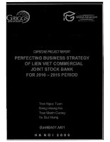 Perfecting business strategy of Lien Viet Commercial Joint Stock Bank for 2010-2015 period