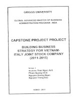 Building business strategy for Vietnam - Italy Joint stock Company (2011-2015)