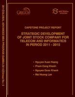 Strategic developmentof joint stock company for telecom and informatics in period 2011 - 2015