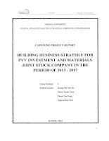 Building business strategy for PVV Investment and Materials Joint stock Company in the period of 2013-2017