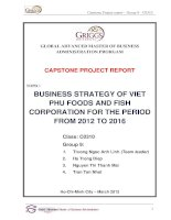 Business strategy of Viet Phu foods and fish corporation for the period from 2012 to 2016