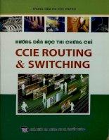 Hướng dẫn học thi chứng chỉ CCIE Routing và Switching