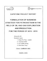 Formulation of business strategy for PetroVietNam in the field of oil and Ga exploration and production for the period of 2010 - 2015