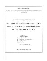 Building the business strategy for IALY Hydro-Power Company in the period 2010-2015