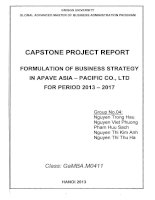 Formulation of business strategy in Apave Asia - Pacific Co., Ltd for period 2013-2017