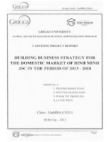 Building business strategy for the domestic market of Binh Minh JSC in the period of 2013-2018