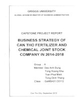 Business strategy of Can Tho Fertilizer and Chemical Joint Stock Company in 2014-2018