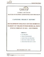 Development strategy of the domestic market of VIDAMO PetroChemical Joint stock Company in 2011-2015 period
