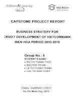 Business strategy for credit development of VietcomBank Bien Hoa period 2013-2018