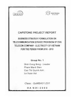 Business strategy formulation on telecommunication service provision of EVN Telecom Company - Electricity of Vietnam for the period from 2010-2015