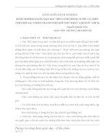 KINH NGHIỆM GIẢNG DẠY BÀI BỐI CẢNH TRONG NƯỚC VÀ TRÊN THẾ GIỚI SAU CHIẾN TRANH THẾ GIỚI THỨ NHẤT (LỊCH SỬ LỚP 9)