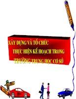 SKKN Xây dựng kế hoạch và tổ chức thực hiện trong trường THCS
