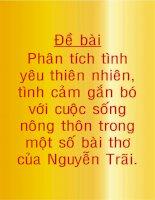 Phân tích tình yêu thiên nhiên, tình cảm gắn bó với cuộc sống nông thôn trong một số bài thơ của Nguyễn Trãi
