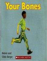 Bài tiếng anh viết về xương (02 your bones )