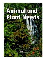 bài viết tiếng anh về Animal and plant needs