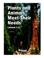 bài viết tiếng anh về Plants and animals meet their needs 1