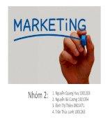 Chiến lược Marketing Mix Dòng sản phẩm Hapacol của DHG