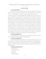 SKKN GIÚP HỌC SINH LỚP 5 CỦNG CỐ KIẾN THỨC VỀ TỪ ĐỒNG ÂM VÀ TỪ NHIỀU NGHĨA
