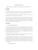 """Bài viết số 6 Ngữ văn lớp 9 """"Lặng lẽ Sa Pa"""" của Nguyễn Thành Long là một truyện ngắn giàu chất thơ"""