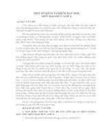 SKKN MỘT SỐ KINH NGHIỆM DẠY HỌC MÔN ĐẠO ĐỨC LỚP 4